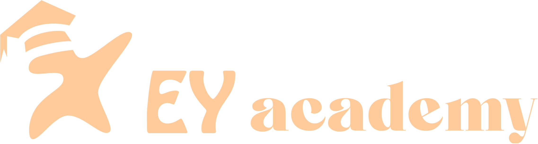 Excel Youth Academy